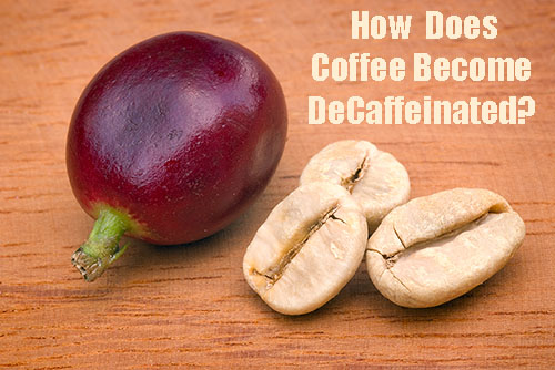 How does coffee become Decaffeniated