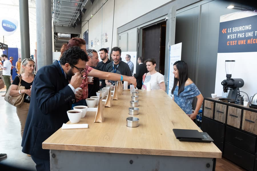 How To Do a Coffee Cupping