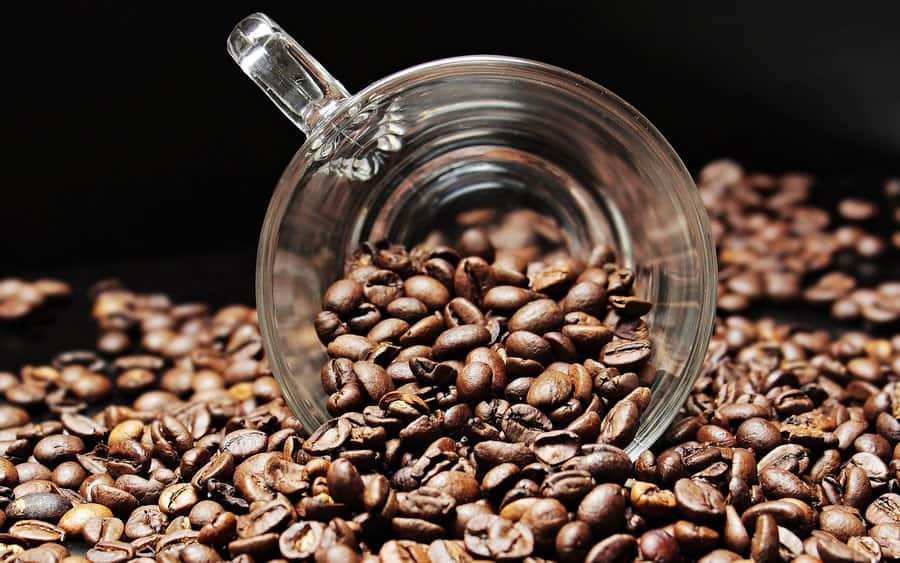 Learn How to Cup Coffee